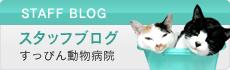 スタッフブログすっぴん動物病院