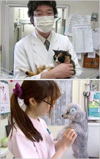 人と動物が共存し、お互いに健康で明るく楽しい毎日、それが塚越動物病院スタッフ全員の願いです。