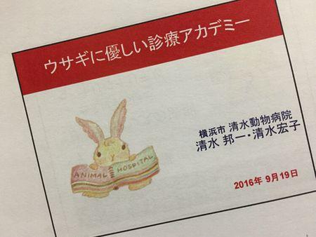 ウサギのセミナー